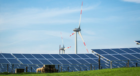 Solar panels and wind turbines, field and cattle in the foreground