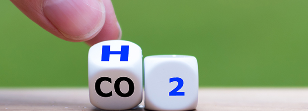 Dices showing H2O and CO2.