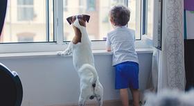 Hund und Kind schauen aus dem Fenster