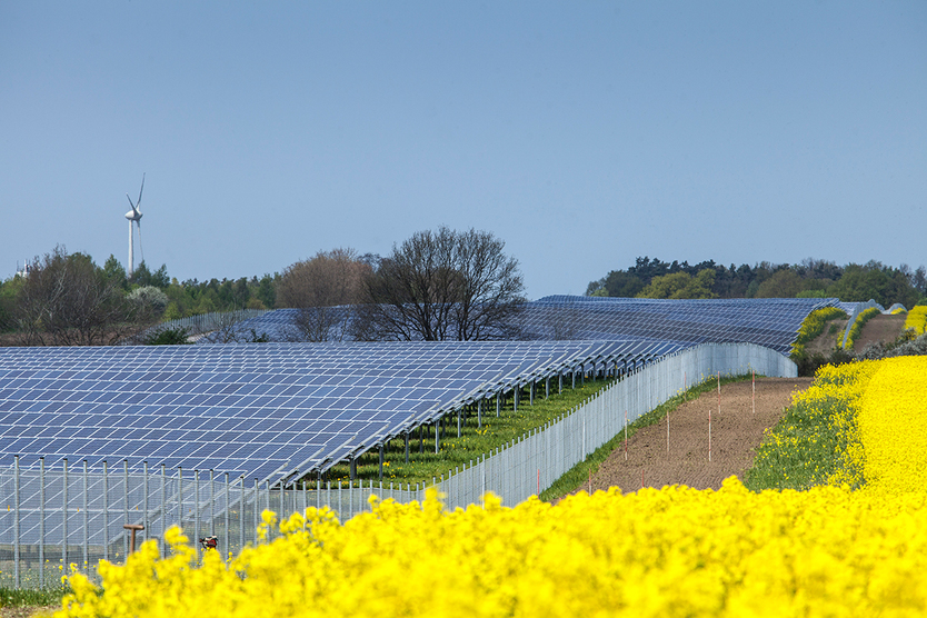 Photovoltaik-Freifläche.